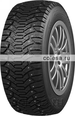 Tire Cordiant Polar